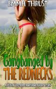 Gangbanged by the Rednecks: A Taboo Punishment Public DubCon Rough Mind Control Bareback Humiliation Menage Erotica Short Story