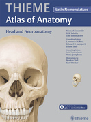 Head and Neuroanatomy - Latin Nomencl. (THIEME Atlas of Anatomy)