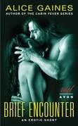 Brief Encounter: An Erotic Short