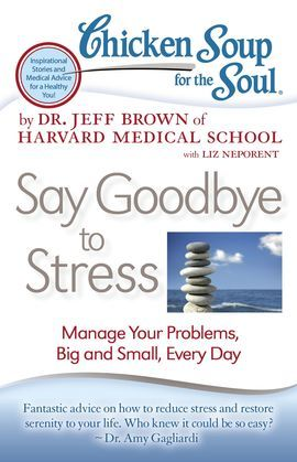 Chicken Soup for the Soul: Say Goodbye to Stress: Manage Your Problems, Big and Small, Every Day