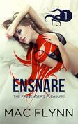 Ensnare: The Passenger's Pleasure #1: Paranormal Demon Romance