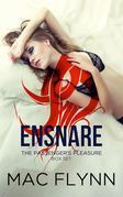 Ensnare: The Passenger's Pleasure Box Set: Paranormal Demon Romance