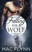 Falling For A Wolf #3: BBW Werewolf Shifter Romance