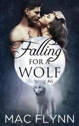 Falling For A Wolf #6: BBW Werewolf Shifter Romance