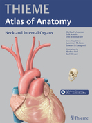 Neck and Internal Organs (THIEME Atlas of Anatomy)