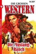 Die großen Western 207