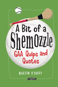 'A Bit Of A Shemozzle'