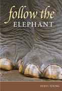 Follow the Elephant