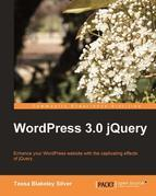 WordPress 3.0 jQuery
