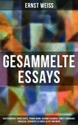 Gesammelte Essays: Chateaubriant, Franz Kafka, Thomas Mann, Giacomo Casanova, Ernest Hemingway, Rousseau, Cervantes zu Ehren, Kleist und mehr