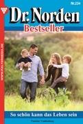 Dr. Norden Bestseller 234 - Arztroman