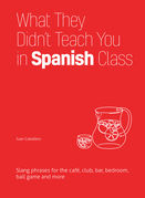 What They Didn't Teach You in Spanish Class