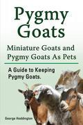 Pygmy Goats. Miniature Goats and Pygmy Goats As Pets. A Guide to Keeping Pygmy Goats.