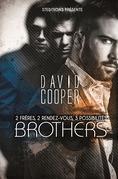 Brother   Livre gay, roman gay