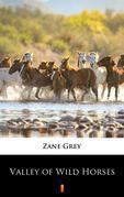 Valley of Wild Horses