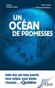 Un océan de promesses