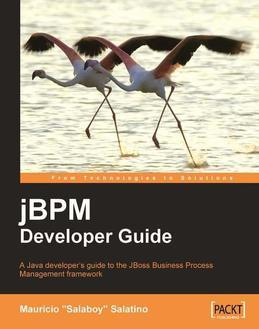 jBPM Developer Guide