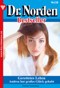 Dr. Norden Bestseller 238 - Arztroman