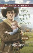 Pony Express Special Delivery (Mills & Boon Love Inspired Historical) (Saddles and Spurs, Book 5)