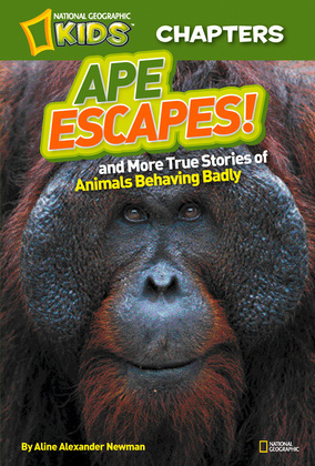 National Geographic Kids Chapters: Ape Escapes: and More True Stories of Animals Behaving Badly (National Geographic Kids Chapters)