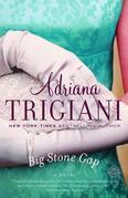 Big Stone Gap (Movie Tie-in Edition): A Novel