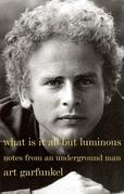 What Is It All but Luminous: Notes from an Underground Man