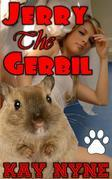 Jerry The Gerbil