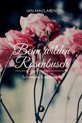 Beim wilden Rosenbusch