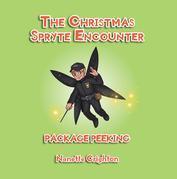 The Christmas Spryte Encounter