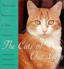 Cats Of Our Lives