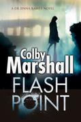 Flash Point: A Psychological Thriller