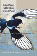 Ecological Pedagogy, Buddhist Pedagogy, Hermeneutic Pedagogy