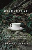 The Wilderness: A Novel