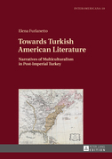 Towards Turkish American Literature