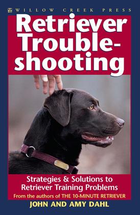 Retriever Troubleshooting: Advanced Retriever Training & Solutions to Training Problems