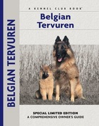 Belgian Tervuren