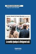 Les nouvelles dynamiques du développement social. Intervention collective et territoires