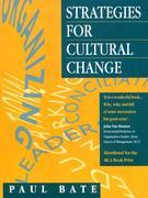 Strategies for Cultural Change