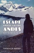 Escape Through the Andes: A Novel