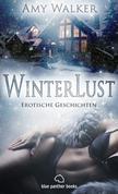 WinterLust | Erotische Geschichten (Harter Sex, Jüngere, Kopfkino, Lust, Paarsex MFMF, Streng, Weihnachten)