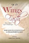 Wings of Faith: Soar Above Life's Challenges