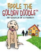 Apple the Golden Doodle