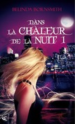 Dans la Chaleur de la Nuit I