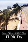 Scenic Driving Florida