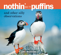 Nothin' but Puffins