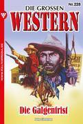 Die grossen Western 228 – Western