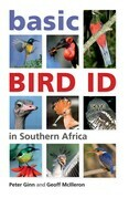 Basic Bird Id in Southern Africa