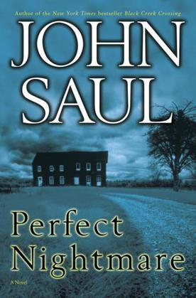 Perfect Nightmare: A Novel
