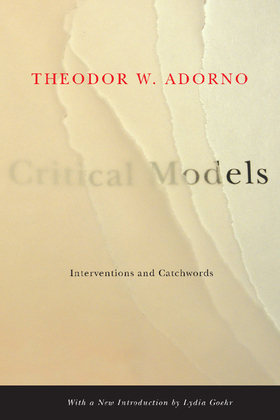 Critical Models: Interventions and Catchwords