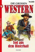 Die großen Western 230